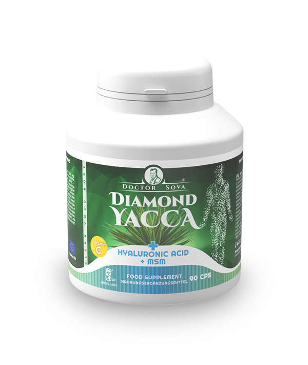 DY Hyaluronic Acid + MSM + Vitamin C