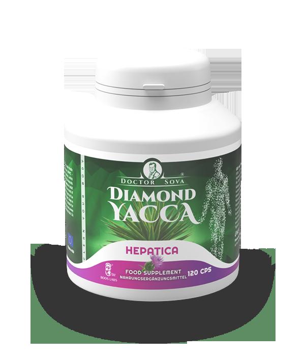 Diamond yacca hepatica